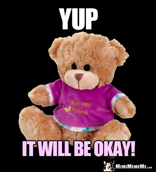 Special Friend Teddy Bear Says: Yup, It Will Be Okay!