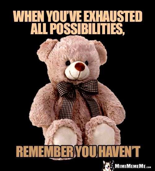 Zen Teddy Bear: When you've exhausted all possibilities, remember you haven't.