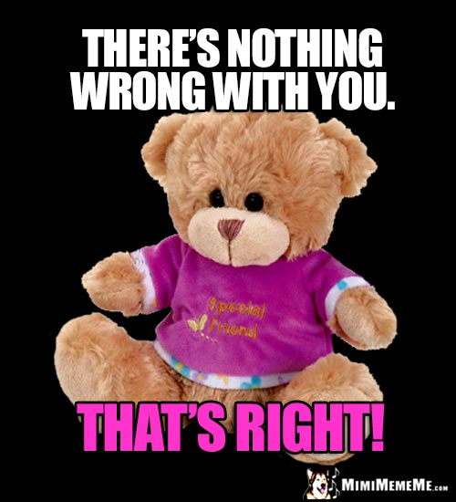 Best Friend Teddy Bear: There's nothing wrong with you. That's Right!
