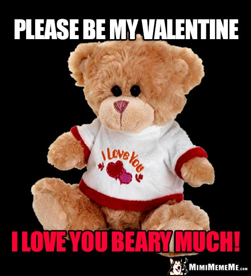 Teddy Bear Says: Please be my Valentine. I love you beary much!