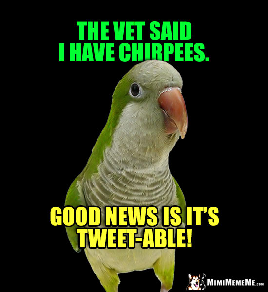 Sick Bird Joke: The vet said I have Chirpees. Good news is it's Tweet-able!
