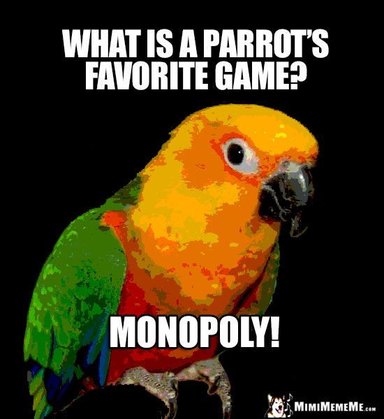 Playful Parrot Asks: What is a parrot's favorite game? Monopoly