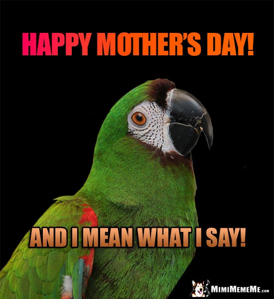 Parrot Says: Happy Mother's Day! And I Mean What I Say!