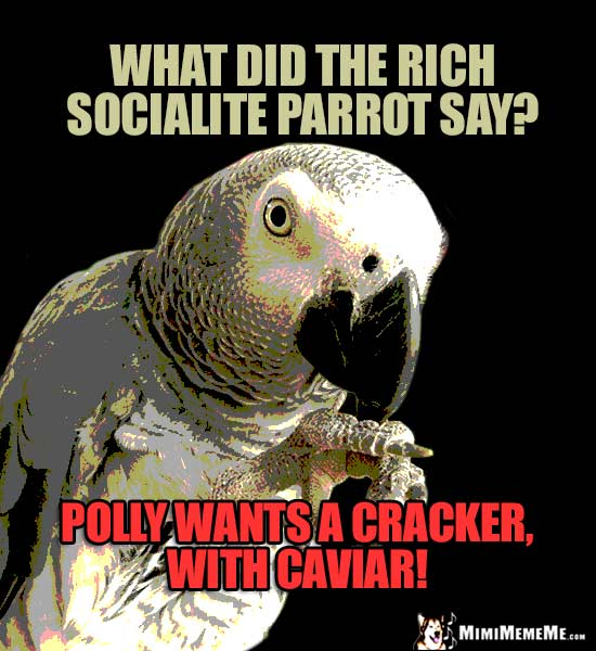 Parrot Riddle: What did the rich socialite parrot say? Polly wants a cracker, with caviar!