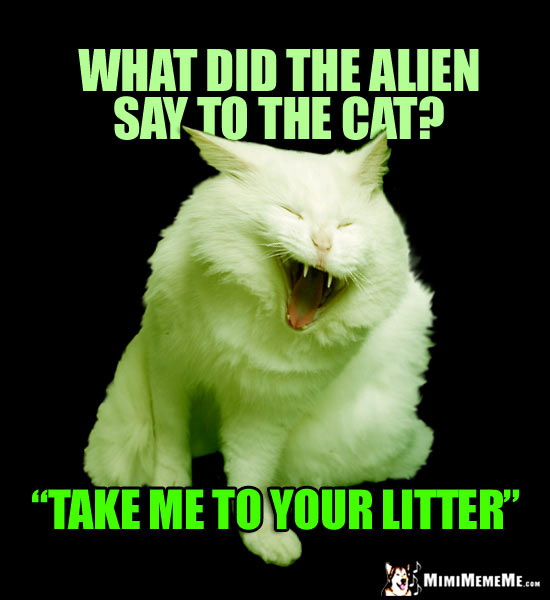 Laughing Cat Says: What did the alien say to the cat? Take me to your litter.