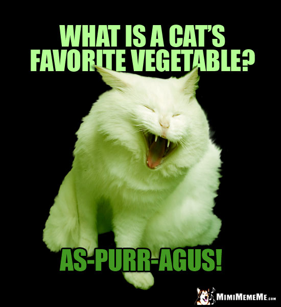 Laughing Cat Riddle: What is a cat's favorite vegetable? As-Purr-Agus!
