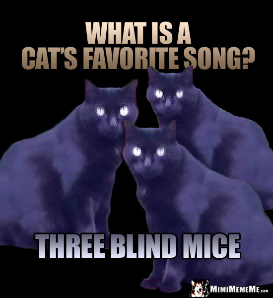 Three Cats Ask: What is a cat's favorite song? Three blind mice