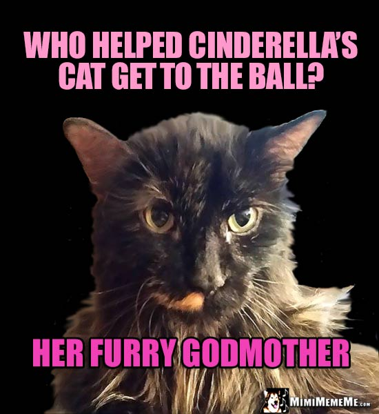 Fancy Cat Asks: Who helped Cinderella's Cat get to the ball? Her Furry Godmother