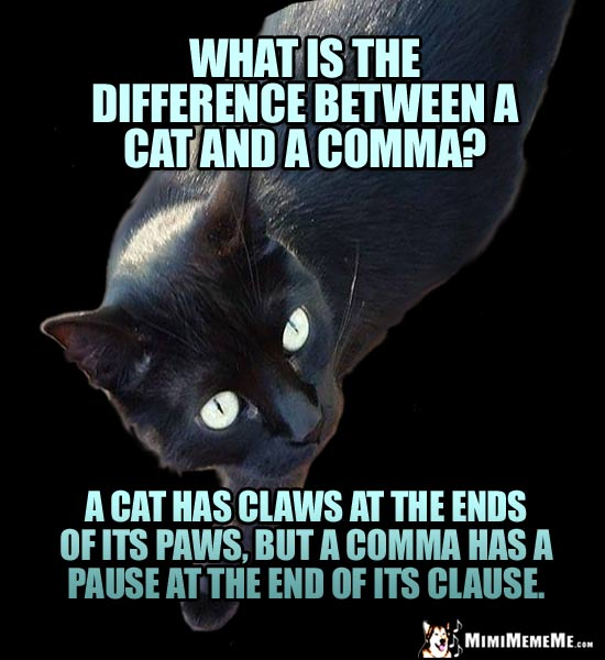 Smart Cat Riddle: What is the difference between a cat and a comma? A cat has claws at the ends of its paws, but a comma has a pause at the end of its clause.