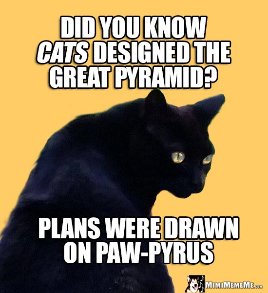 Age Old Cat Wisdom: Did you know cats designed the Great Pyramid? Plans were drawn on Paw-Pyrus