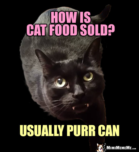 Fang Cat Asks: How is cat food sold? Usually purr can