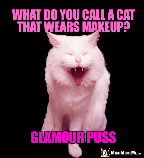 Laughing Cat Asks: What do you call a cat that wears makeup? Glamour Puss