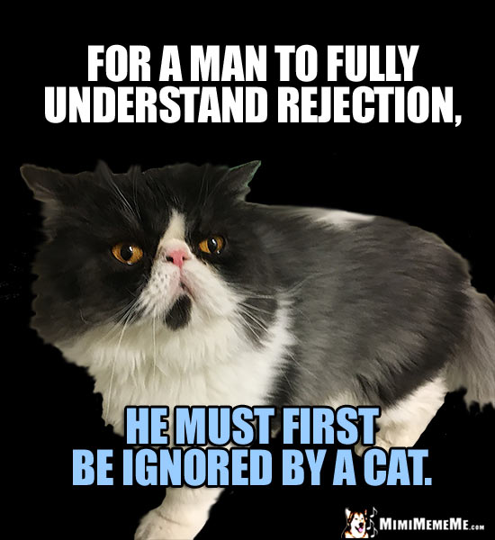 Manly Cat Humor: For a man to fully understand rejection, he must first be ignored by a cat.