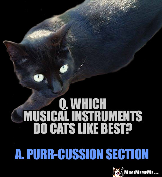 Cat Riddle: Q. Which musical instruments do cats like best? A. Purr-cussion section