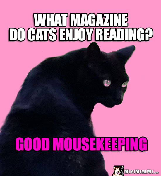 Miss Kitty Riddle: What magazine do cats enjoy reading? Good Mousekeeping