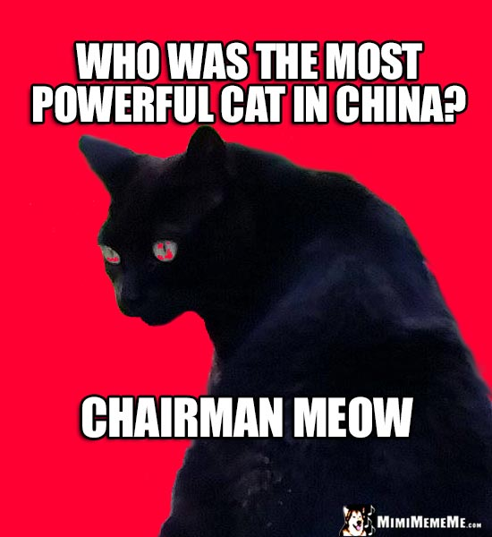 Red Cat Joke: Who was the most powerful cat in China? Chairman Meow
