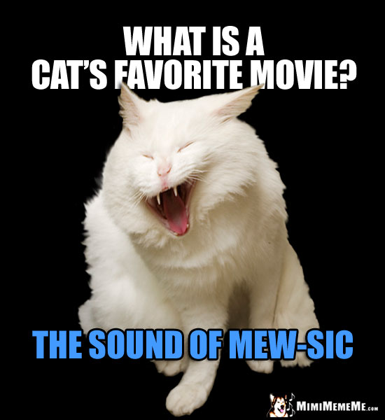 Laughing Cat Asks: What is a cat's favorite movie? The Sound of Mew-Sic