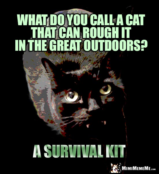 Manly Cat Humor: What do you call a cat that can rough it in the great outdoors? A Survival Kit