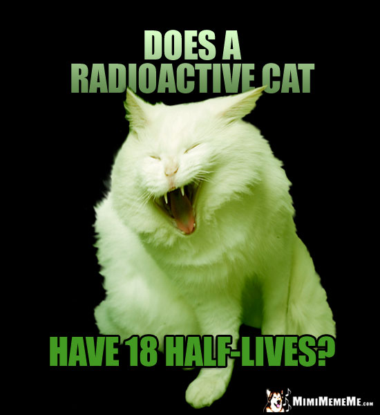 Laughing Cat Asks: Does a radioactive cat have 18 half-lives?