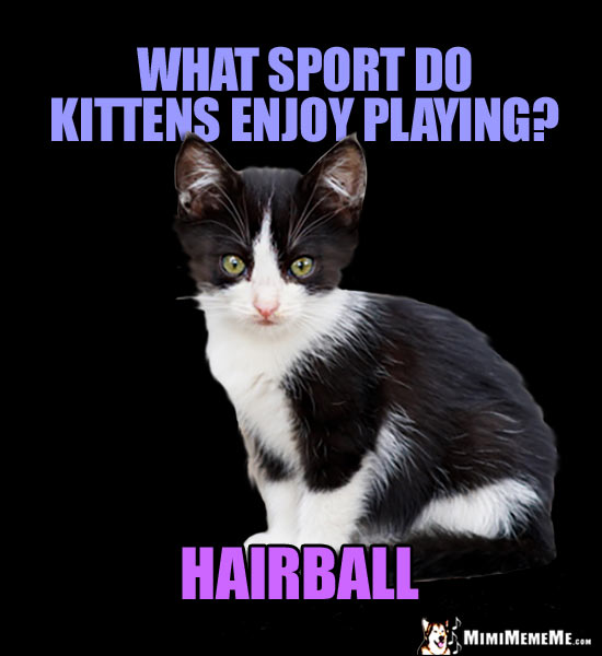 Little Kitty Joke: What sport do kittens enjoy playing? Hairball