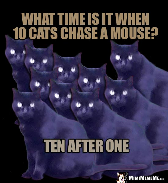 Cats Tell a Joke: What time is it when 10 cat chase a mouse? Ten After One