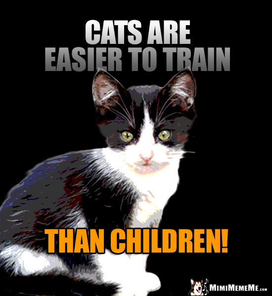 Baby Kitten Says: Cats are easier to train than children!