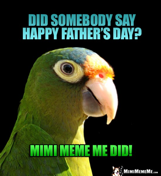 A Parrot Wonders... Did Somebody Say Happy Father's Day? Mimi Meme Me Did!