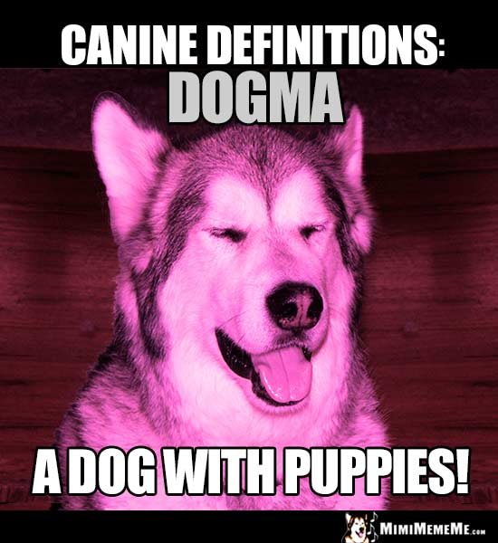 Dog Humor - Canine Definitions: Dogma. A dog with puppies!