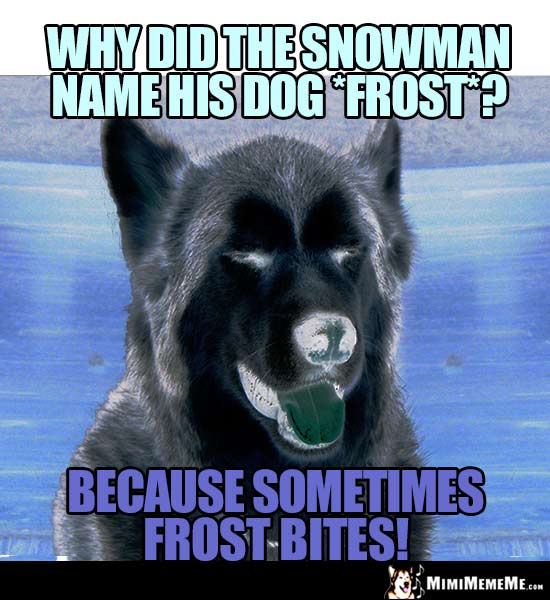 Dog Joke: Why did the snowman name his dog Frost? Because sometimes Frost bites!