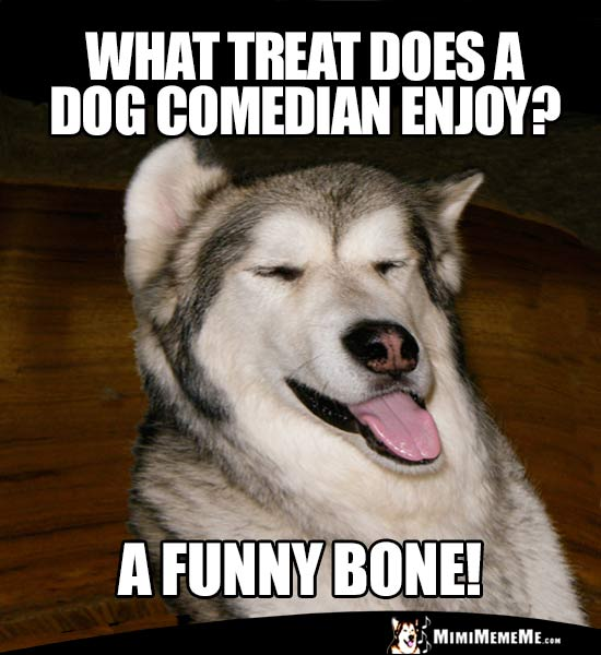 Dog Humor: What treat does a dog comedian enjoy? A Funny Bone!