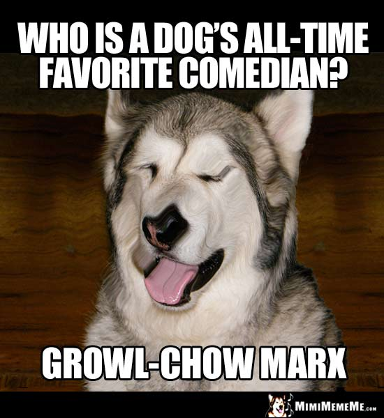 Dog Joke: Who is a dog's all-time favorite comedian? Growl-Chow Marx