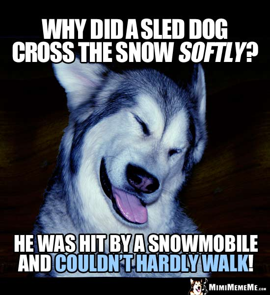 Dog Joke: Why did a sled dog cross the snow softly? He was hit by a snowmobile and couldn't hardly walk!
