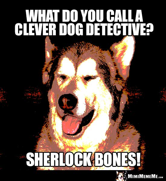 Dog Riddle: What do you call a clever dog detective? Sherlock Bones!