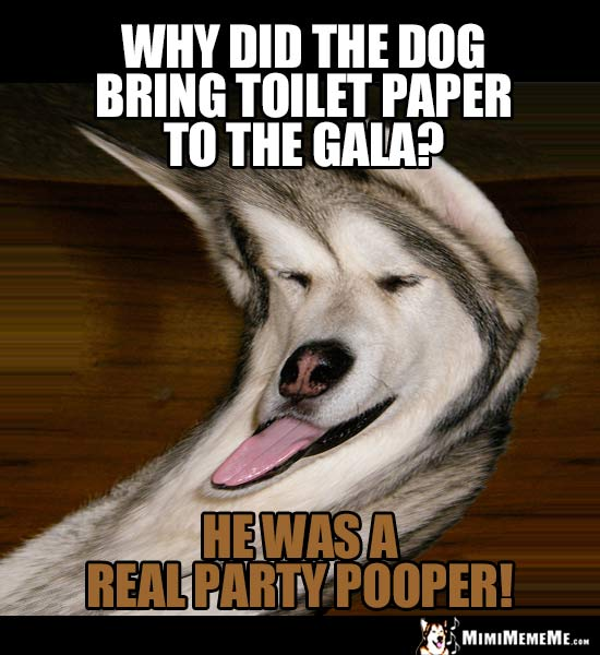 Dog Joke: Why did the dog bring toilet paper to the gala? He was a real party pooper!
