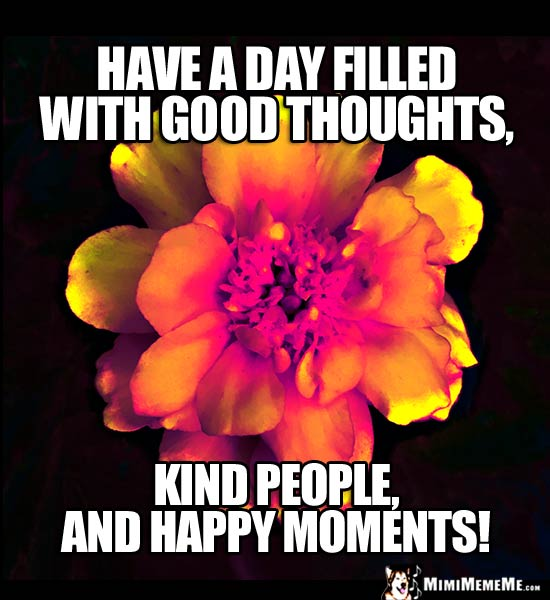 Flower with Motivational Words: Have a day filled with good thoughts, kind people, and happy moments!