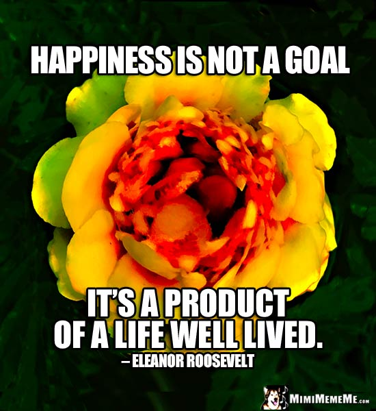 Eleanor Roosevelt Quote: Happiness is not a goal, it's a product of a life well lived.