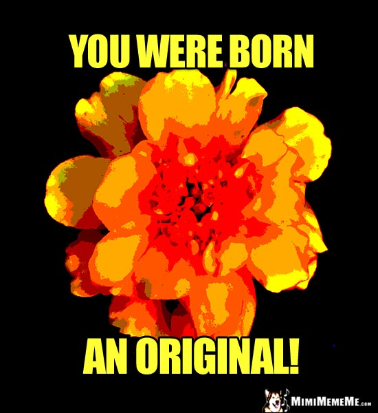 Posterized Flower Saying: You were born an original!