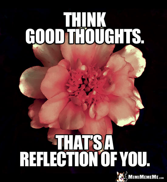 Flower Saying: Think Good Thoughts. That's a reflection of you.