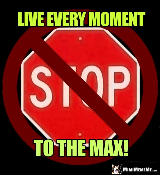 NO Stop Sign: Live every moment to the max!