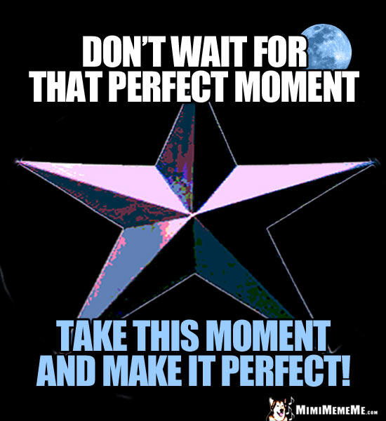 Star & Moon Graphic with: Don't wait for that perfect moment. Take this moment and make it perfect!