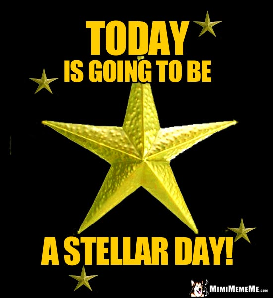 Gold Stars Say: Today is going to be a stellar day!