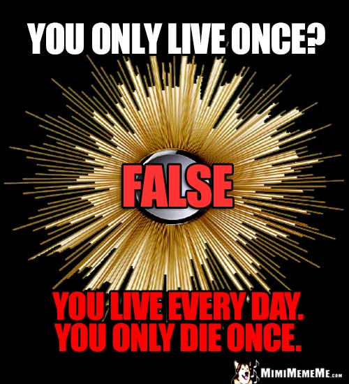 Humorous Good Thought: You only live once. FALSE. You live every day. You only die once.