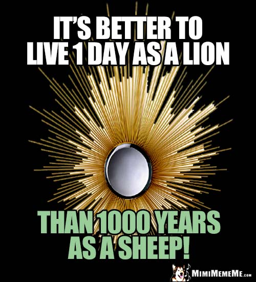 Zen Thought: It's better to live 1 day as a lion, than 1000 years as a sheep!